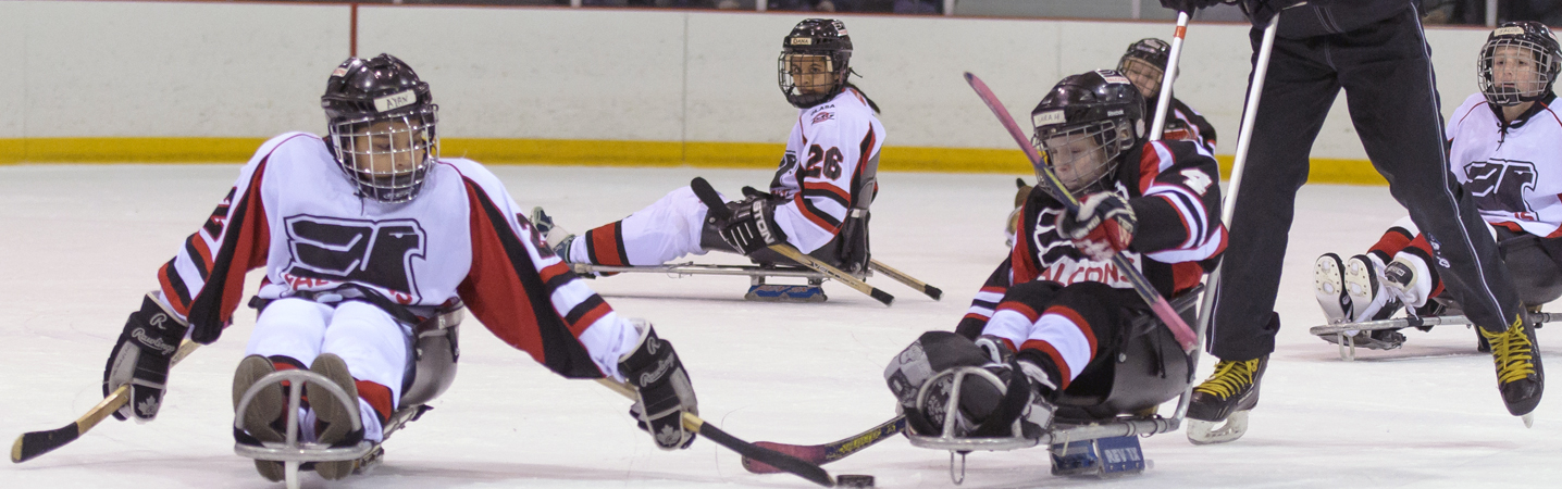 Sled Hockey Faceoff